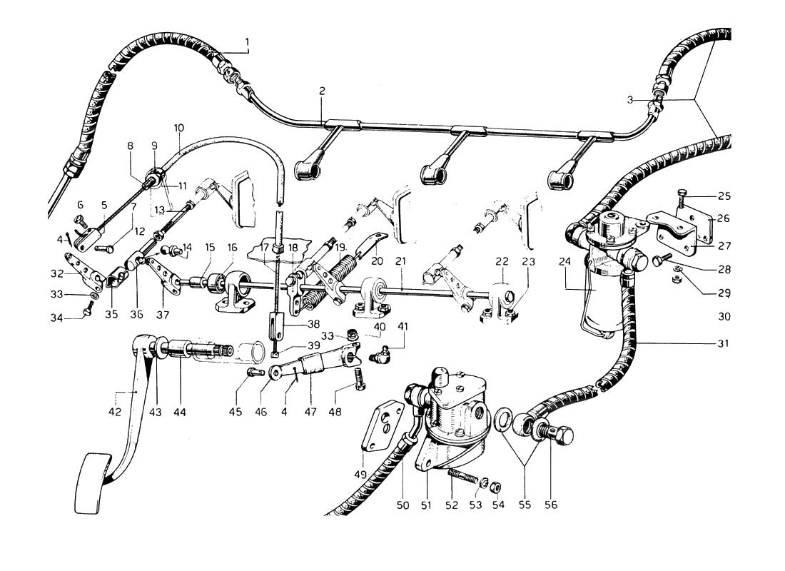Diagram Search for Ferrari 275 GTB/GTS 2 cam - Ferrparts on